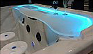 Acrylic Swim up Bar